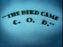 The Bird Came C.O.D. - Poster / Capa / Cartaz - Oficial 1