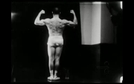Os Musculos Superficiais do Homem (Os Musculos Superficiais do Homem)