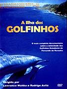 A Ilha dos Golfinhos (Great Ocean Adventures: The Spinner Dolphin)
