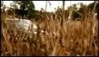 Lake City Trailer (2008)