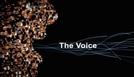 A Voz (BBC) (The Voice (BBC))