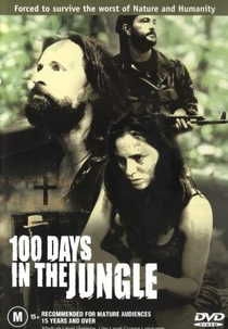 100 Dias na Floresta - Poster / Capa / Cartaz - Oficial 1