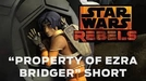 Star Wars Rebels - Property of Ezra Bridger (Star Wars Rebels - Property of Ezra Bridger)