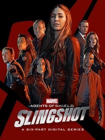 Agentes da S.H.I.E.L.D. - Ioiô (1ª Temporada) - Poster / Capa / Cartaz - Oficial 1
