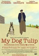 Minha Cadela Tulipa (My Dog Tulip)
