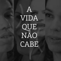 A Vida Que Não Cabe - Poster / Capa / Cartaz - Oficial 1
