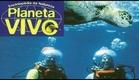 Planeta Vivo - Nas Águas do Pacífico