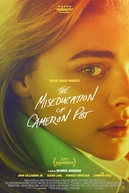 O Mau Exemplo de Cameron Post (The Miseducation of Cameron Post)
