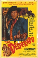 Duelo de assassinos (The Desperado)