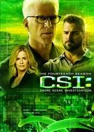CSI: Investigação Criminal (14ª Temporada)