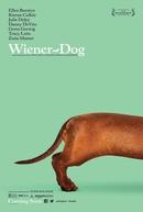 Wiener-Dog (Wiener-Dog)