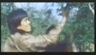 NINJA Thunderbolt Trailer