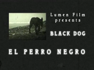 El Perro Negro - Histórias da Guerra Civil Espanhola (El Perro Negro. Stories from the Spanish Civil War)
