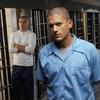 Prison Break: retorno da série é confirmado para 2016