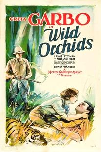 Orquídeas Selvagens - Poster / Capa / Cartaz - Oficial 1