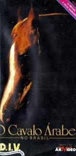 O Cavalo Árabe no Brasil - Poster / Capa / Cartaz - Oficial 1