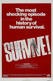 Os Sobreviventes dos Andes - Poster / Capa / Cartaz - Oficial 2