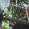 """Não são as Imagens: Crítica - """"Tangerines"""""""
