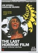 Fanático (The Last Horror Film)