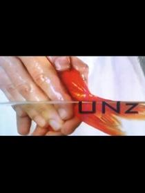 UNz - Poster / Capa / Cartaz - Oficial 1