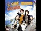 Cinco Amigos (Fünf Freunde)