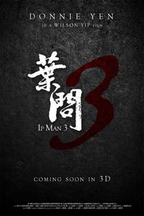 O Grande Mestre 3 - Poster / Capa / Cartaz - Oficial 4
