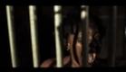 Берегись / Beware (2010) Trailer