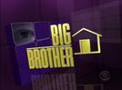 Big Brother 11 (Big Brother 11)