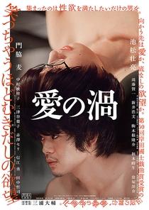 Love's Whirlpool - Poster / Capa / Cartaz - Oficial 1
