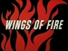 Asas de Fogo (Wings of Fire)