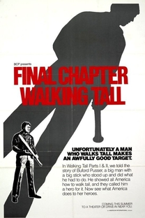 Fibra de Valente Parte III - Poster / Capa / Cartaz - Oficial 2