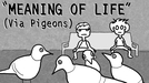 MEANING OF LIFE (MEANING OF LIFE)
