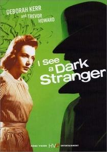 Um Estranho na Escuridão - Poster / Capa / Cartaz - Oficial 1