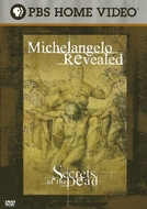 O Lado Obscuro de Michelangelo (Michelangelo Revealed)