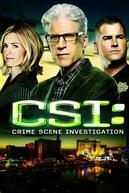 CSI: Crime Scene Investigation (Season 15) (CSI: Investigação Criminal (15ª temporada))