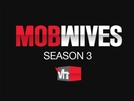 Esposas da Máfia (3ª temporada) (Mob Wives (Season 3))