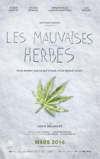 Bad Seeds - Poster / Capa / Cartaz - Oficial 1