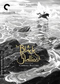 O Corcel Negro - Poster / Capa / Cartaz - Oficial 4