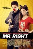 O Cara Certo (Mr. Right)