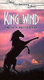 O Filho da Tempestade - Poster / Capa / Cartaz - Oficial 2
