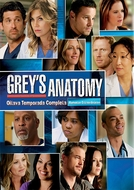 Grey's Anatomy (8ª Temporada) (Grey's Anatomy (Season 8))