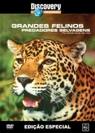 Grandes felinos: Predadores selvagens (Discovery Channel - The ultimate guide: Big cats)