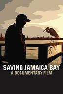 Saving Jamaica Bay (Saving Jamaica Bay)