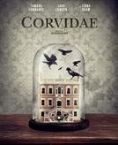 Corvidae (Corvidae)