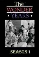 Anos Incríveis (1ª Temporada) (The Wonder Years (Season 1))