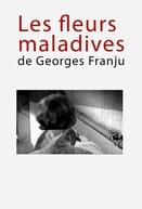 As Flores Doentias de Georges Franju (Les Fleurs Maladives de Georges Franju)