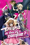 Kore wa Zombie Desu ka? (1ª Temporada)