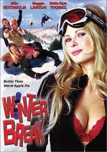 Loucas Férias de Inverno - Poster / Capa / Cartaz - Oficial 1