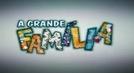 A Grande Família (9ª Temporada) (A Grande Família (9ª Temporada))