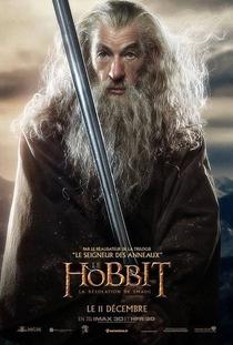 O Hobbit: A Desolação de Smaug - Poster / Capa / Cartaz - Oficial 16
